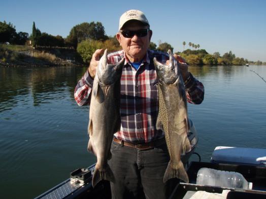 Sacramento River Salmon